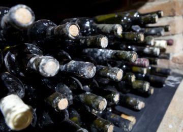 Vinný sklep IMG_5502